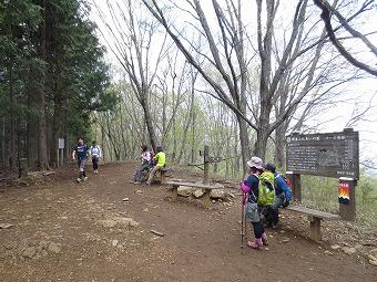 4月 棒ノ折山・岩茸石山 ---山の散歩道---